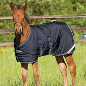 AMIGO FOAL RUG MEDIUM/200G